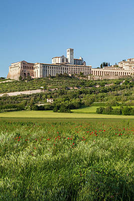 Assisi Wall Art - Photograph - Italy, Assisi The Religious Compound by Brenda Tharp