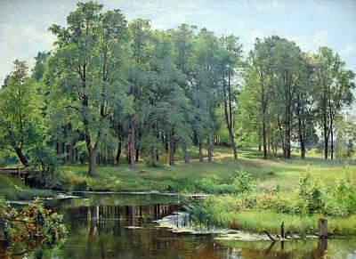 Painting - Ivan Shishkin - In The Park 1897 by Ivan Shishkin
