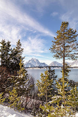 Photograph - Jackson Lake Overlook by Michael Chatt