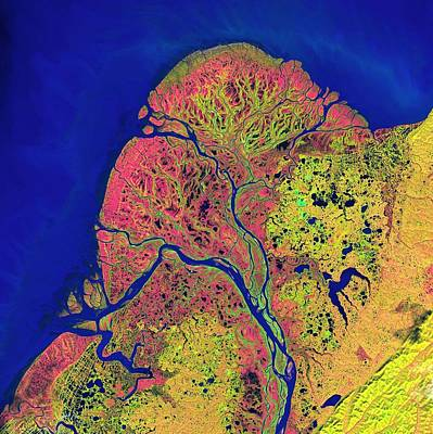 Painting - Lena River Delta Nasa 2 by Celestial Images