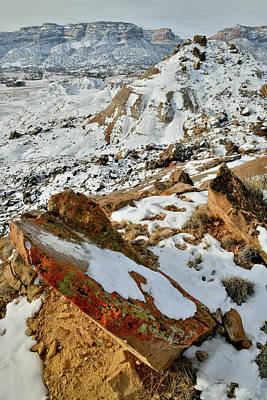 Photograph - Lichen Covered Rocks Atop Ruby Mountain by Ray Mathis