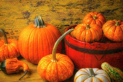 Photograph - Lovely Autumn Still Life by Garry Gay