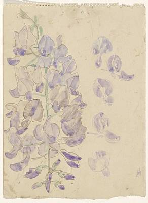 Animals Royalty-Free and Rights-Managed Images - Lupine, Carel Adolph Lion Cachet, 1874 - 1945 by Carel Adolph Lion Cachet