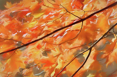 Art Print featuring the photograph Maple Leaves On Fire by Rob Huntley