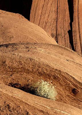 Priska Wettstein Pink Hues - Monument Valley 7306 by Bob Neiman