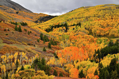 Photograph - Mountainside Fall Color Along Last Dollar Road by Ray Mathis