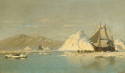 Painting - Off Greenland - Whaler Seeking Open Water by William Bradford