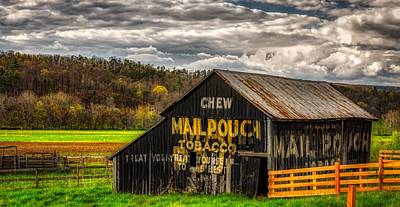 Mail Pouch Photograph - Old Mail Pouch Tobacco Barn by Mountain Dreams