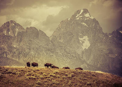 Photograph - On The Ridge by Mary Hone