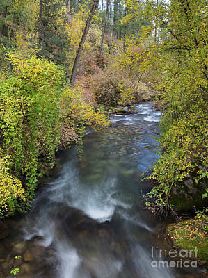 Photograph - Palisades Creek by Idaho Scenic Images Linda Lantzy
