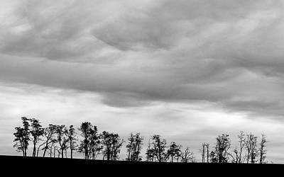 Pop Art - Palouse Tree Line and Sky 9630 by Bob Neiman