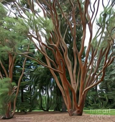 Digital Art - Paper Bark Maple by Kathie Chicoine