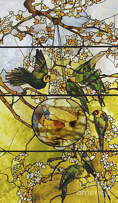 Parakeet Wall Art - Glass Art - Parakeets And Gold Fish Bowl by Louis Comfort Tiffany