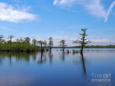 Photograph - Pasquotank River North Carolina by Louise Heusinkveld