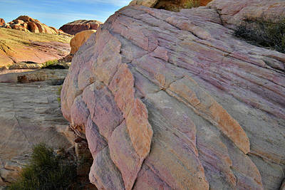 Photograph - Pastel Colored Sandstone In Valley Of Fire by Ray Mathis