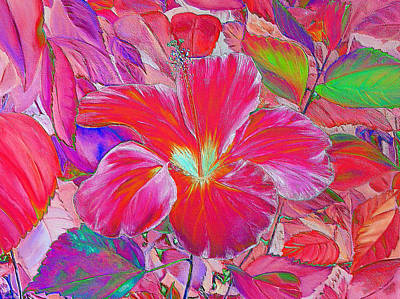 Digital Art - Pink Hibiscus by Elizabeth Lock