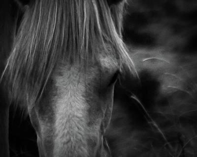 Photograph - Placitas 6 by Catherine Sobredo
