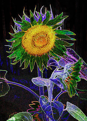 Photograph - Psychedelic Sunflower by Paul W Faust - Impressions of Light