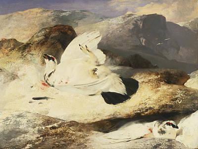 Painting - Ptarmigan In A Landscape by Edwin Landseer