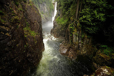 Photograph - Rainforest And Trail Scenes In Capilano by Rich Wheater