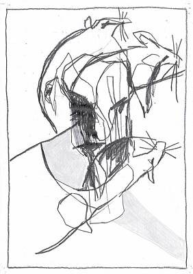Drawing - Rat Face by Artist Dot