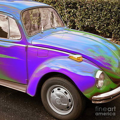 Photograph - Trippy Beetle by Patrick M Lynch
