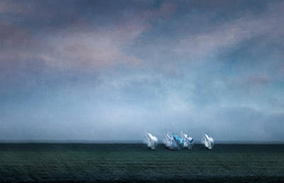 Photograph - Regatta 2 by John Whitmarsh