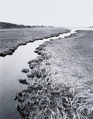 Photograph - River Near Forest by Allan Montaine