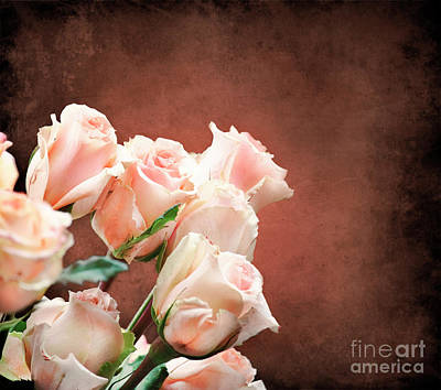 Photograph - Roses Bouquet by Jelena Jovanovic