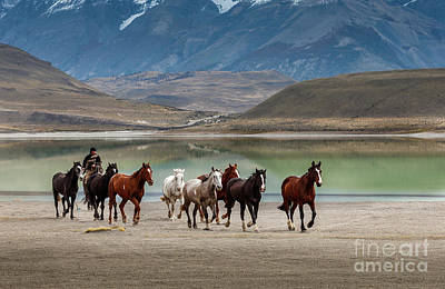 Photograph - Rounding Up The Horses V2 by Patti Schulze