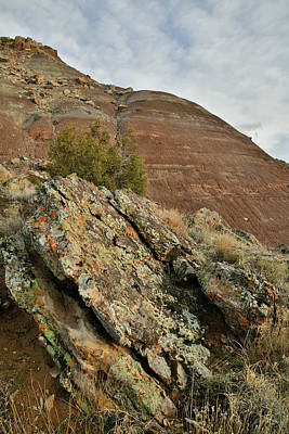 Photograph - Ruby Mountain In Evening Light by Ray Mathis