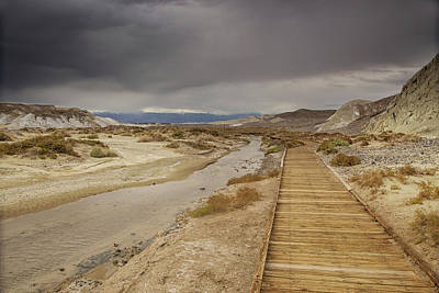 Photograph - Salt Creek Trail by Kunal Mehra