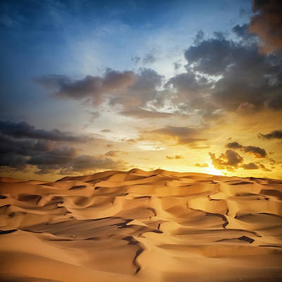 Photograph - Sand Dune Sunset by Cinoby