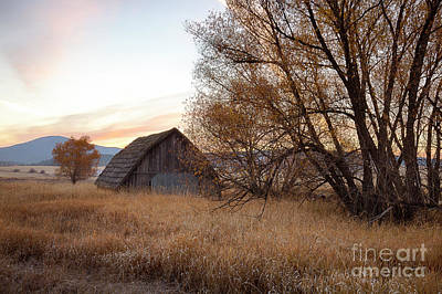 Photograph - Sanders Barn by Idaho Scenic Images Linda Lantzy
