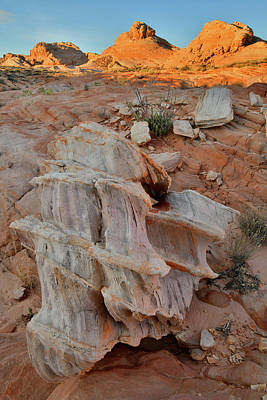 Photograph - Sandstone Artwork In Valley Of Fire by Ray Mathis