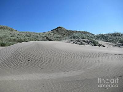 Photograph - Schoorl Dunes by Chani Demuijlder