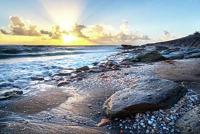 Photograph - Seashells On The Seashore by Debra and Dave Vanderlaan