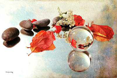 Photograph - Seasons In A Bubble by Randi Grace Nilsberg