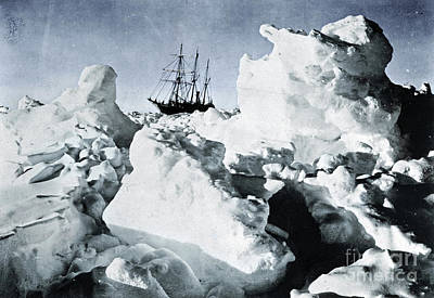 Photograph - Shackleton Expedition by Granger