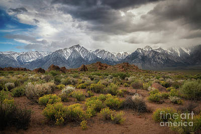 Photograph - Sierra Nevada Mountain Range by Michael Ver Sprill
