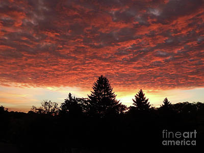 Photograph - Silhouette Sunrise by Phil Perkins