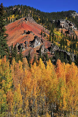 Photograph - Silverton Aspens by Ray Mathis