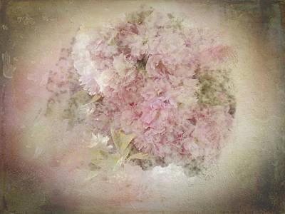 Photograph - Sweet, Soft Romance by Marilyn Wilson