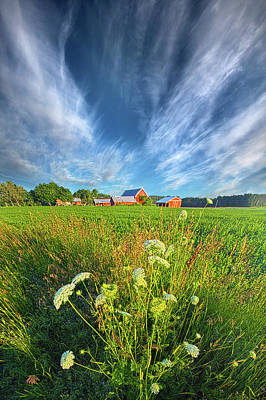 Photograph - Summer Dreams Drifting Away by Phil Koch