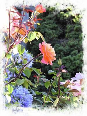 Photograph - Summer Garden by Leslie Hunziker
