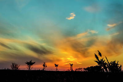 Photograph - Sunset Silhouettes by Cathy Kovarik