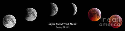 Photograph - Super Blood Wolf Moon Eclipse by Gary Whitton