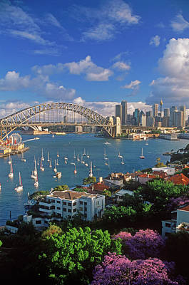 Photograph - Sydney Harbour by Chad Ehlers