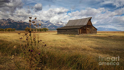 Photograph - T.a. Moulton Barn by Doug Sturgess