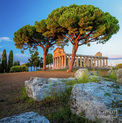 Photograph - Temple Of Athena Columns by Inge Johnsson